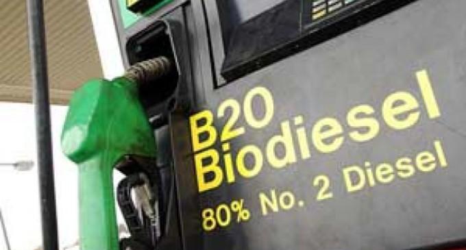 El país exportará biodiesel a Estados Unidos para uso automotor