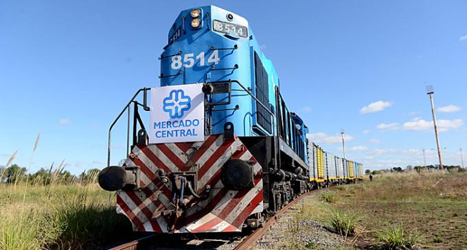 Se aprobó la contratación para rehabilitar ramales del Ferrocarril Belgrano Cargas