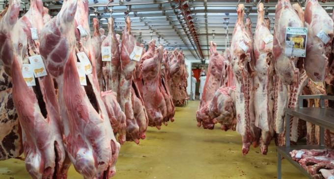 Argentina vuelve a exportar carne a Europa