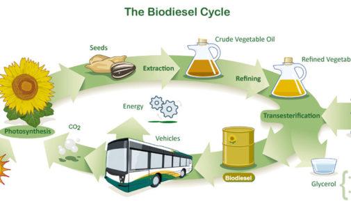 La Matanza ya recupera 30 mil litros diarios de aceite para biodiesel