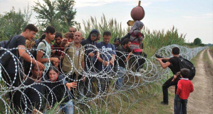 FMI: la migración aumenta la riqueza del país receptor