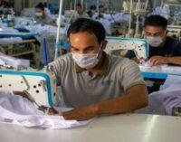 Repro II: cuáles son los requisitos para los salarios de septiembre